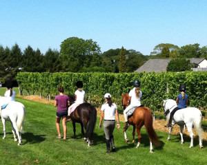 Pony Camp at Wolffer Estate